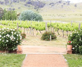 Brindabella Hills Winery - Accommodation Redcliffe