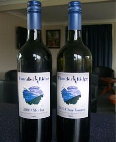 Thunder Ridge Wines - Accommodation Redcliffe