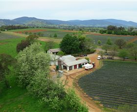 Schmidts Strawberry Winery - Accommodation Redcliffe