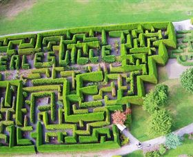 Hedgend Maze and Healesville Laser Sport - Accommodation Redcliffe
