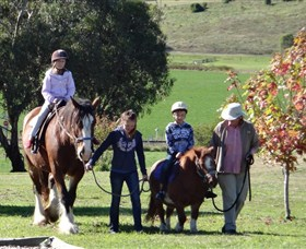 Bathurst Farm Experience - Accommodation Redcliffe