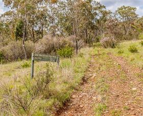 Old Mountain Road Walking Track - Accommodation Redcliffe