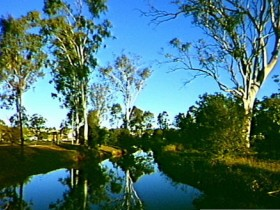Dingo Creek Park - Accommodation Redcliffe
