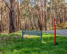 Lobs Hole Ravine 4WD Trail - Accommodation Redcliffe