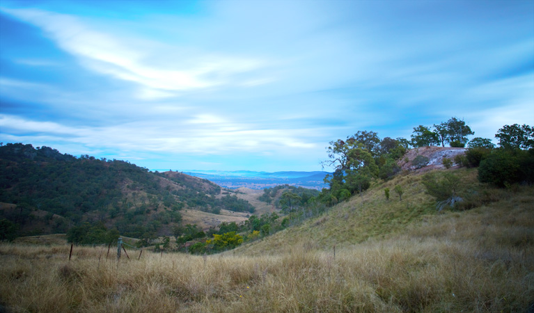 Burning Mountain Nature Reserve - Accommodation Redcliffe