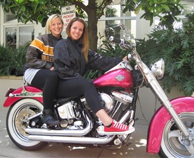 Wild Ride Harley and Motorcycle Tours - Accommodation Redcliffe