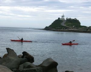 Newcastle Kayak Tours - Accommodation Redcliffe
