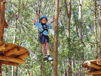TreeTops Newcastle - Accommodation Redcliffe