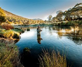Fly Fishing Tumut - Accommodation Redcliffe
