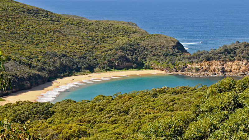 Bouddi National Park - Accommodation Redcliffe