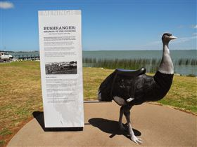 Birdman of the Coorong - Accommodation Redcliffe
