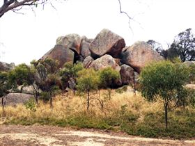 Mount Boothby Conservation Park - Accommodation Redcliffe