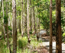 Hallorans Hill Conservation Park - Accommodation Redcliffe