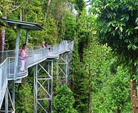 Mamu Tropical Skywalk - Accommodation Redcliffe