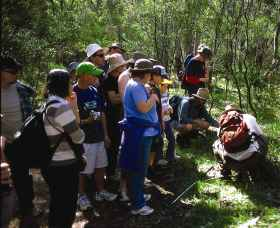 Warrumbungle National Park Discovery Program - Accommodation Redcliffe