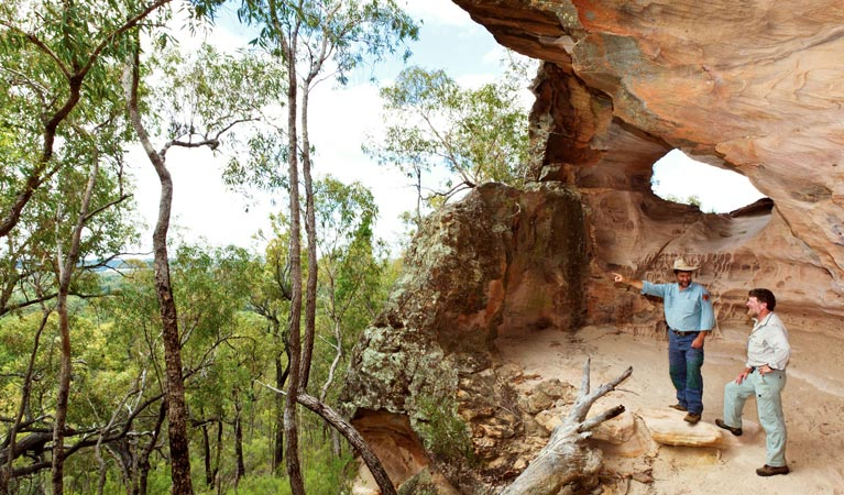 Pilliga National Park - Accommodation Redcliffe