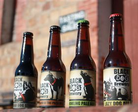Black Dog Brewery - Accommodation Redcliffe