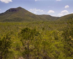 Kutini-Payamu Iron Range National Park CYPAL - Accommodation Redcliffe