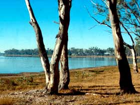 Lake Broadwater Conservation Park - Accommodation Redcliffe