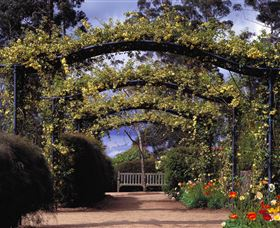 Blue Mountains Botanic Garden - Accommodation Redcliffe