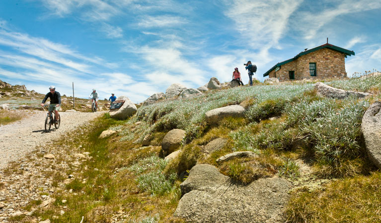 Mount Kosciuszko Summit walk - Accommodation Redcliffe