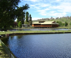 Gaden Trout Hatchery - Accommodation Redcliffe