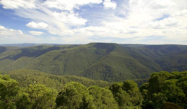 Barrington Tops National Park - Accommodation Redcliffe