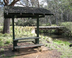 Barrington Tops State Forest - Accommodation Redcliffe
