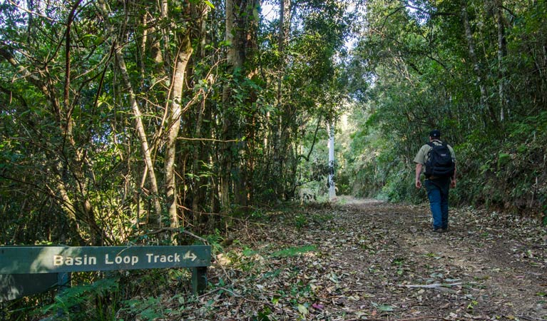 Basin Loop track - Accommodation Redcliffe