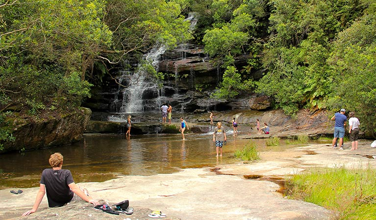 Somersby Falls picnic area - Accommodation Redcliffe