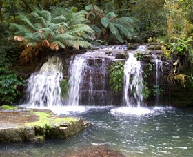 Barrington Tops National Park Walks - Accommodation Redcliffe