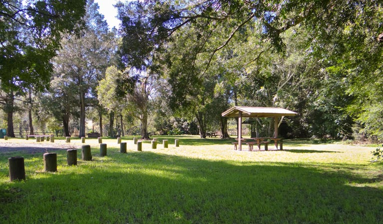 Moore Park picnic area - Accommodation Redcliffe