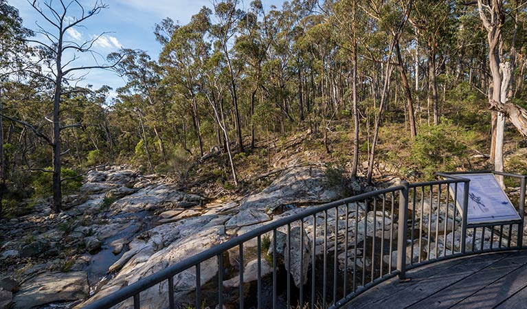 Myanba Gorge walking track - Accommodation Redcliffe