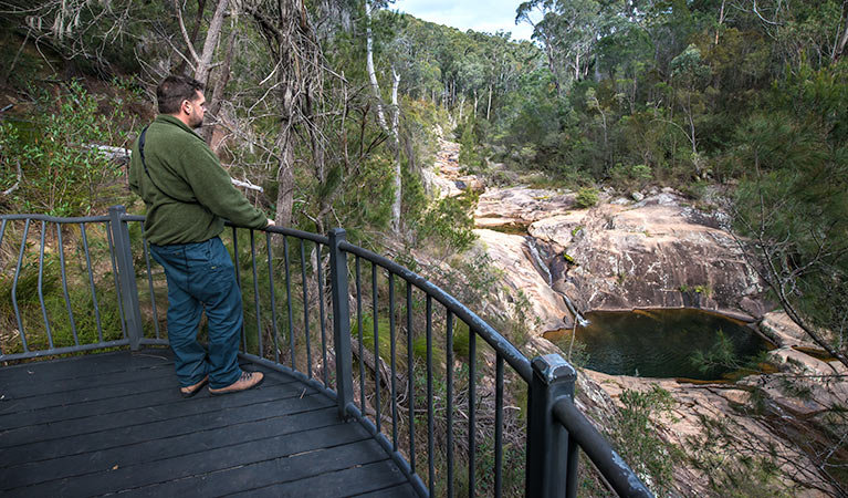 Biamanga National Park - Accommodation Redcliffe