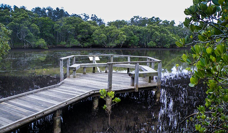 Walk on Water walking track - Accommodation Redcliffe