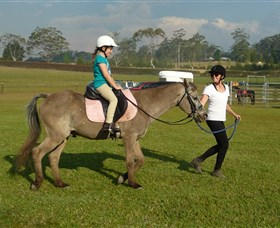 Port Macquarie Horse Riding Centre - Accommodation Redcliffe