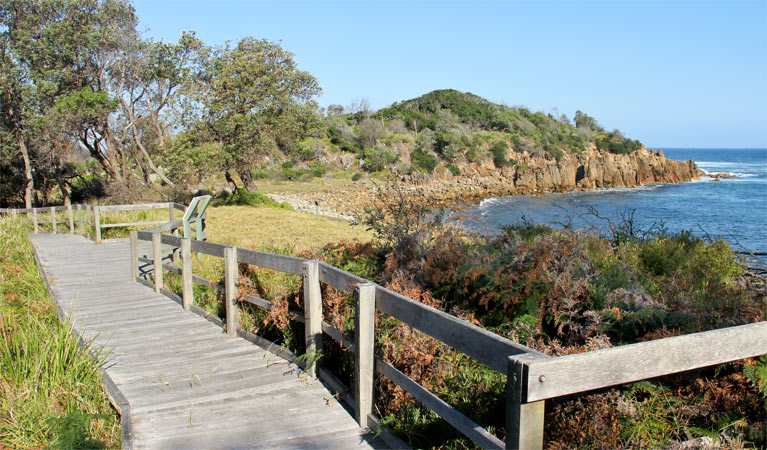 Mimosa Rocks walking track - Accommodation Redcliffe