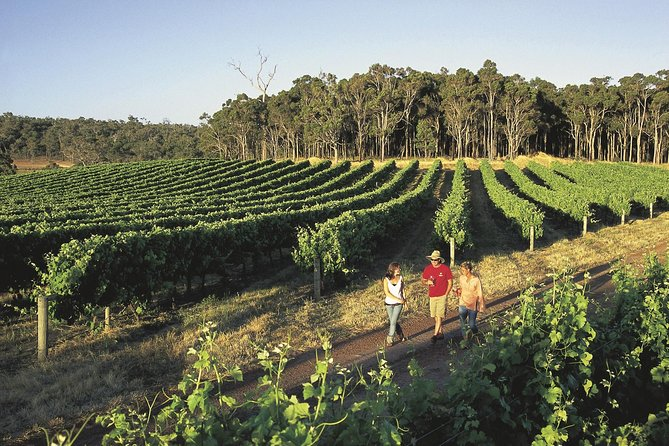 Margaret River Caves Wine and Cape Leeuwin Lighthouse Tour from Perth - Accommodation Redcliffe
