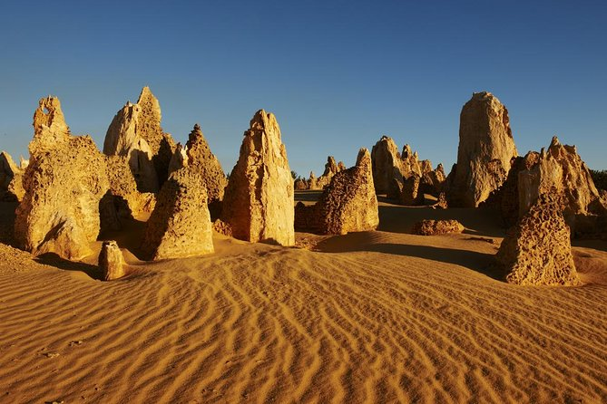 Pinnacles Day Trip from Perth Including Yanchep National Park - Accommodation Redcliffe