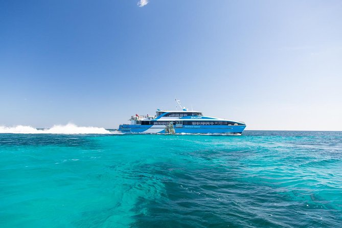 Fremantle to Rottnest Island Roundtrip Ferry Ticket - Accommodation Redcliffe