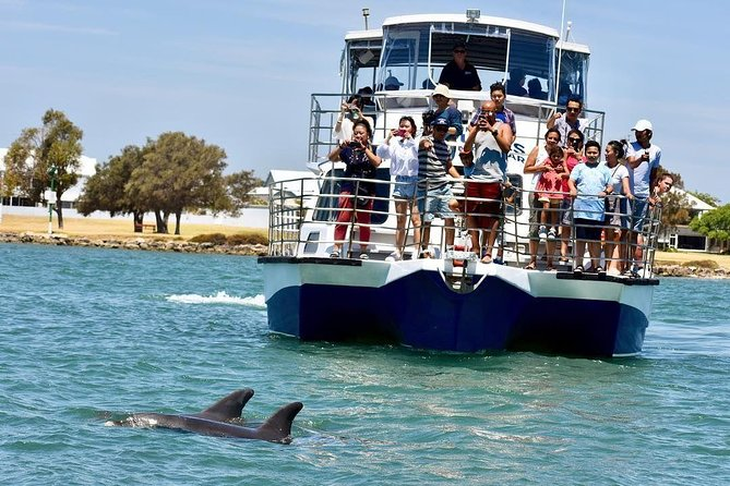 Mandurah Dolphin and Scenic Canal Cruise - Accommodation Redcliffe