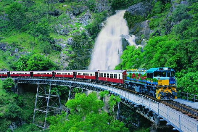 Full-Day Tour with Kuranda Scenic Railway Skyrail Rainforest Cableway and Hartley's Crocodile Adventures from Cairns - Accommodation Redcliffe