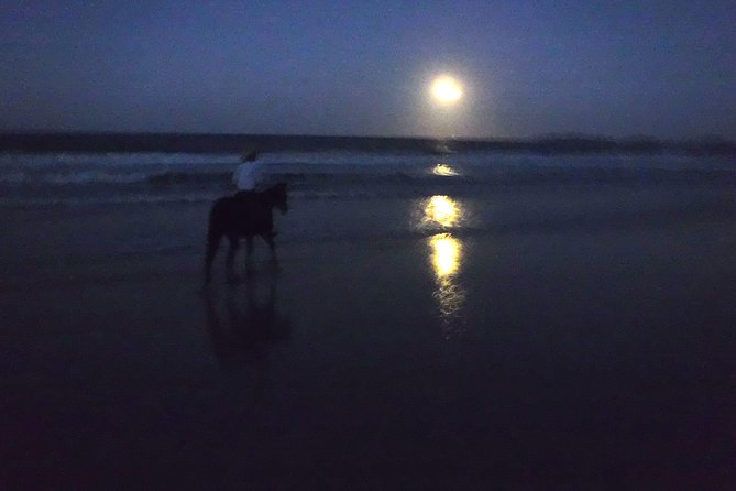 Full Moon Horse Ride at Rainbow Beach - Accommodation Redcliffe