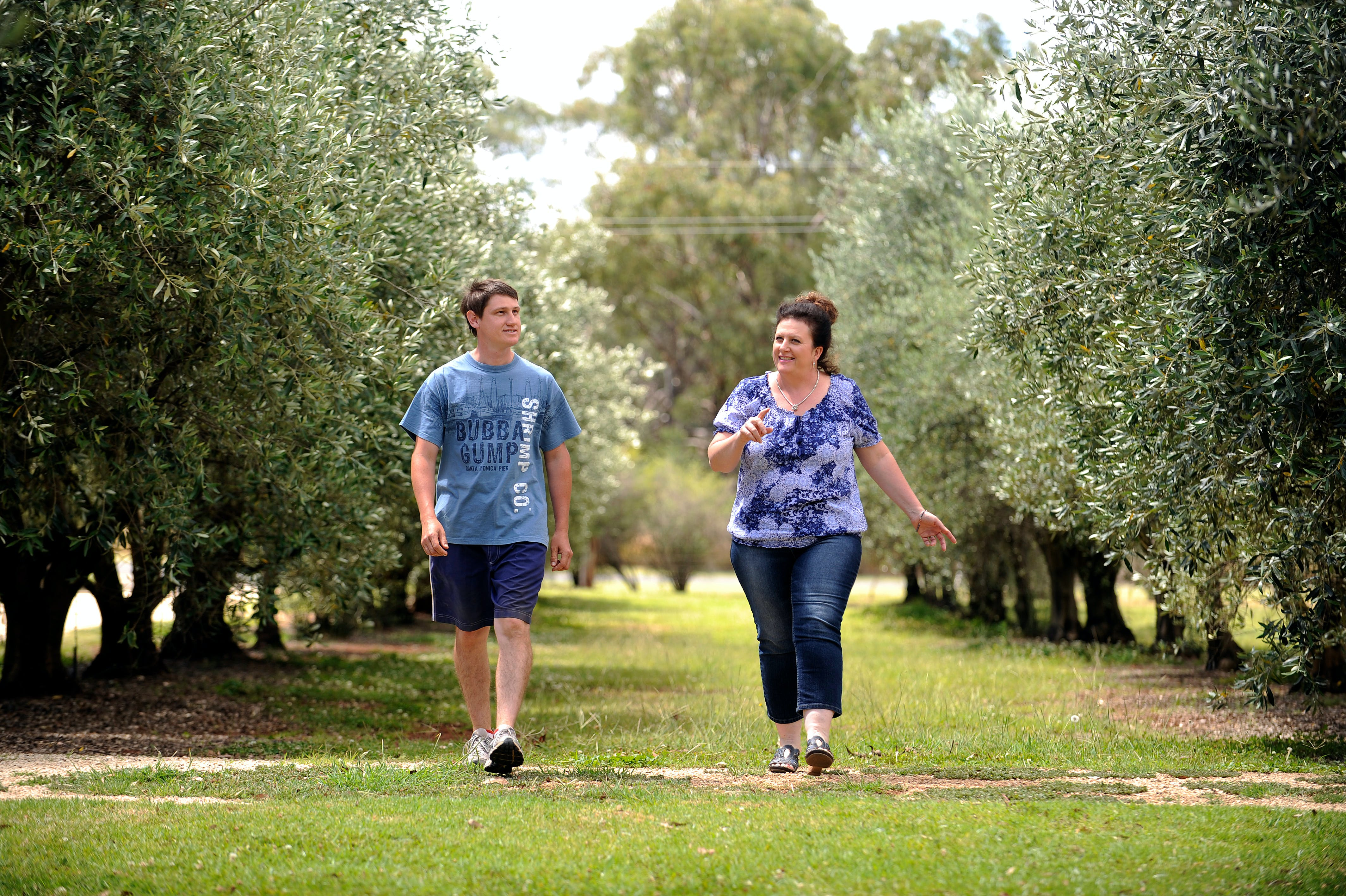 Olives of Beaulieu - Accommodation Redcliffe