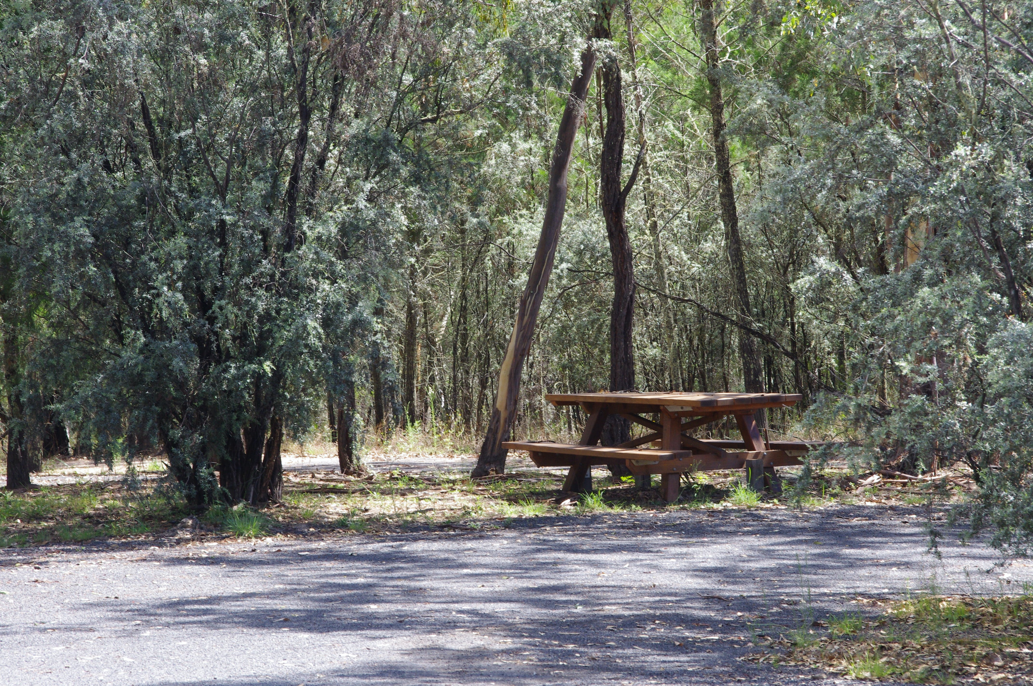 Goonoowigall State Conservation Area - Accommodation Redcliffe
