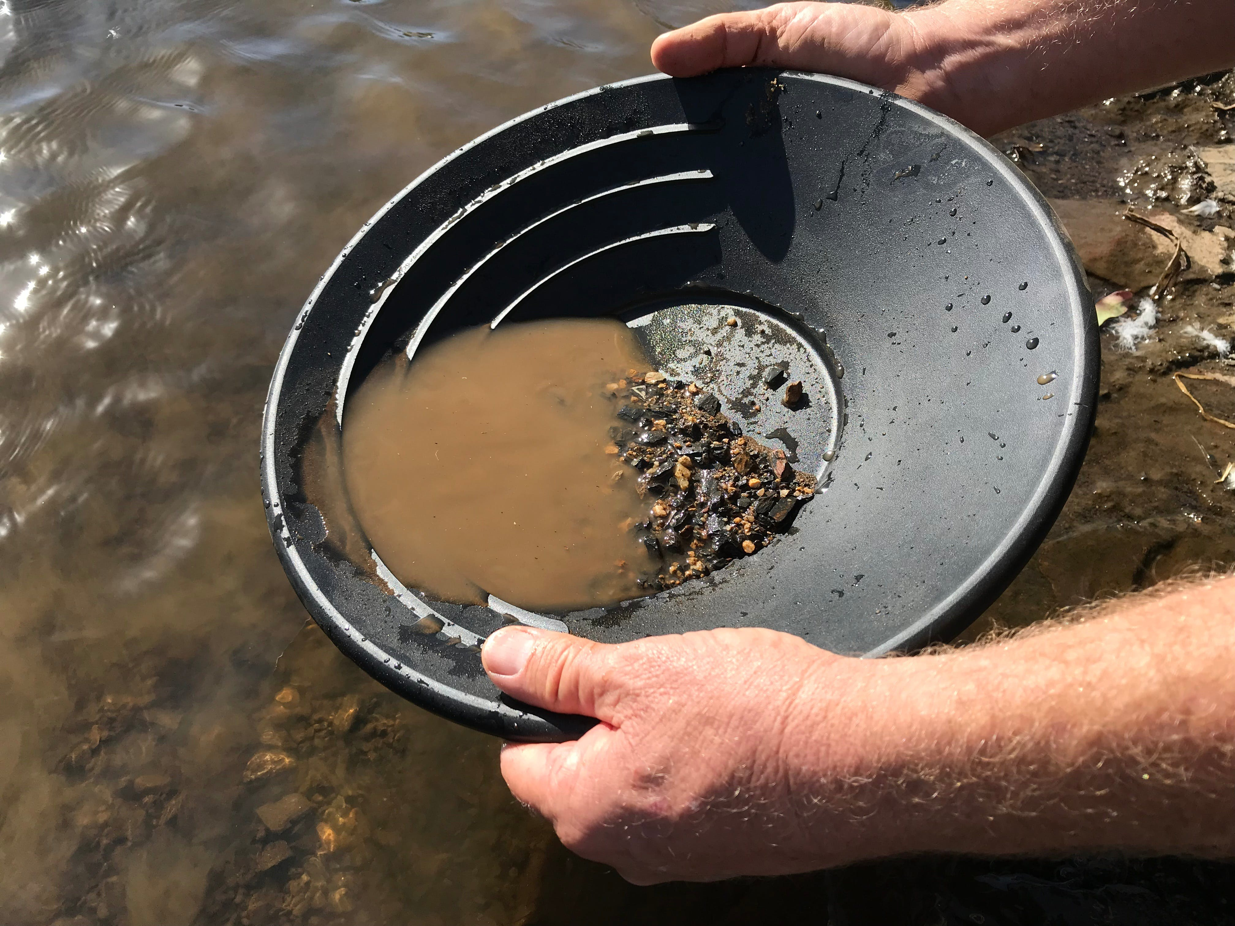 Tuena Panning for Gold - Accommodation Redcliffe
