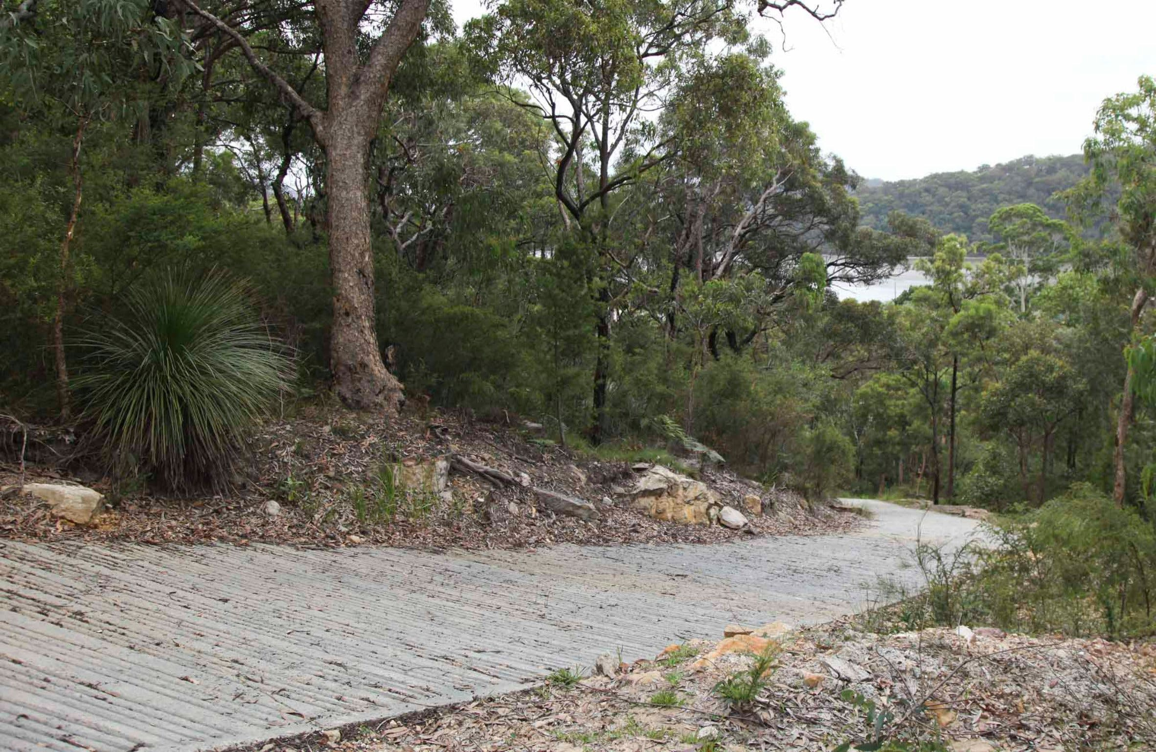 Great North Walk  Ku-ring-gai Chase National Park - Accommodation Redcliffe