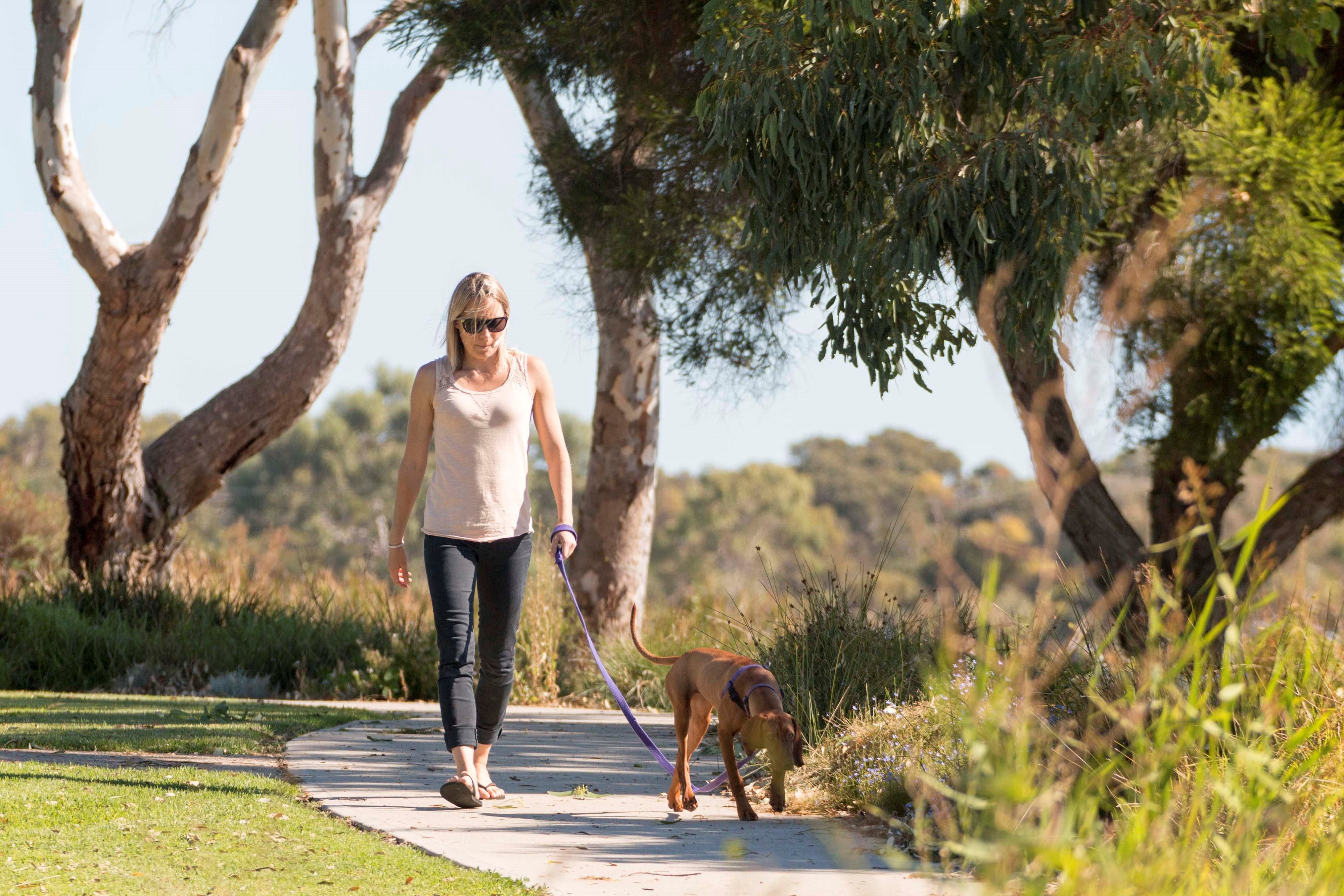 Meningie Walking and Cycling Trails - Accommodation Redcliffe