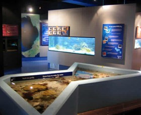 Marine and Freshwater Discovery Centre - Accommodation Redcliffe