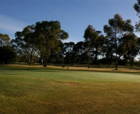 Winchelsea Golf Club - Accommodation Redcliffe